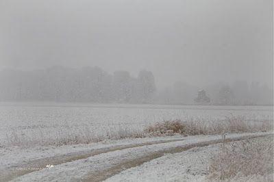 Kinder-Gedichte-Welt: Der erste Schnee
