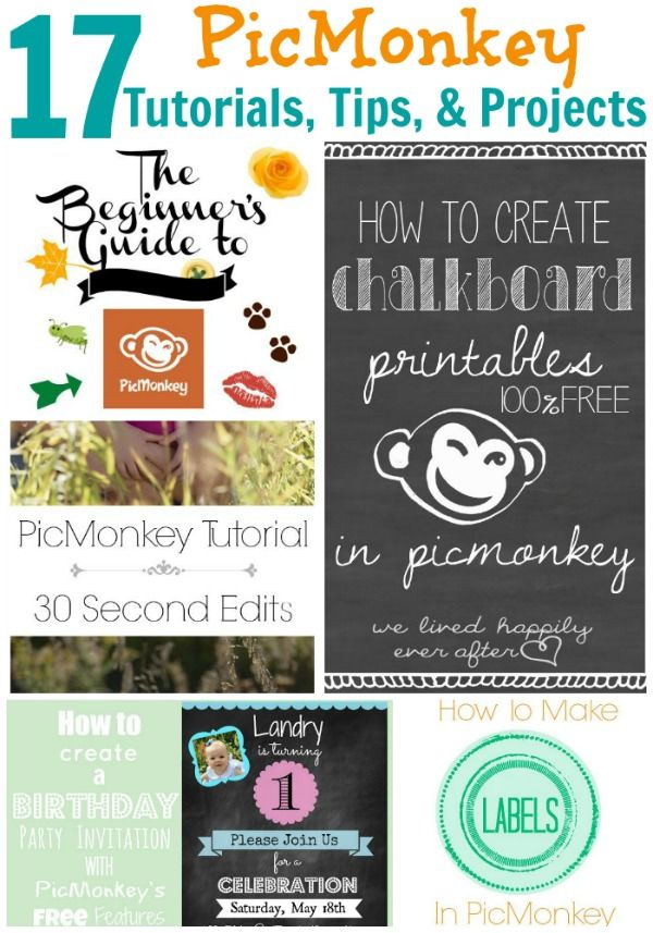 17 PicMonkey Tutorials, Tips, and Projects to help you create great images for your blog. #BloggingTIps