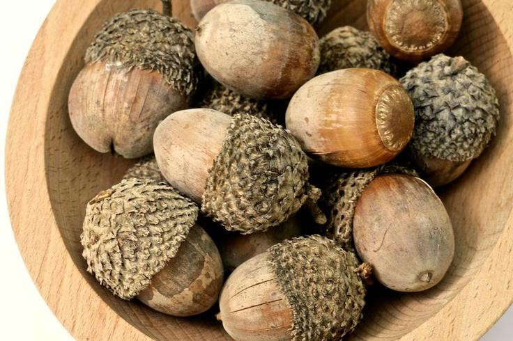 Autumn nut natural acorn more great ideas on for Acorn decoration ideas