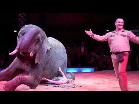 Inspiration fra: Circus Krone 2012: Premiere 1. Winterspielzeit am 25.12.2011 - YouTube