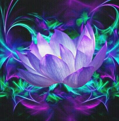 Best 25 lotus flower meanings ideas on pinterest for Lotus flower bomb tattoo