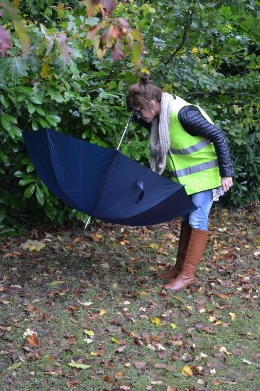 spinnetjes zoeken: met paraplu langs de struiken en bomen wrijven, dan vallen de kriebeldiertjes in je paraplu! bron: www.jufanneleen.com