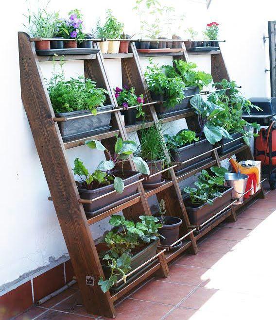 Nuevo proyecto: Huerto semi-vertical ~ Mi azotea verde