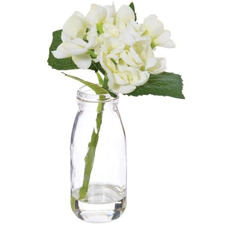 Foliage Hydrangea In Bottle 30cm | Freedom Furniture and Homewares