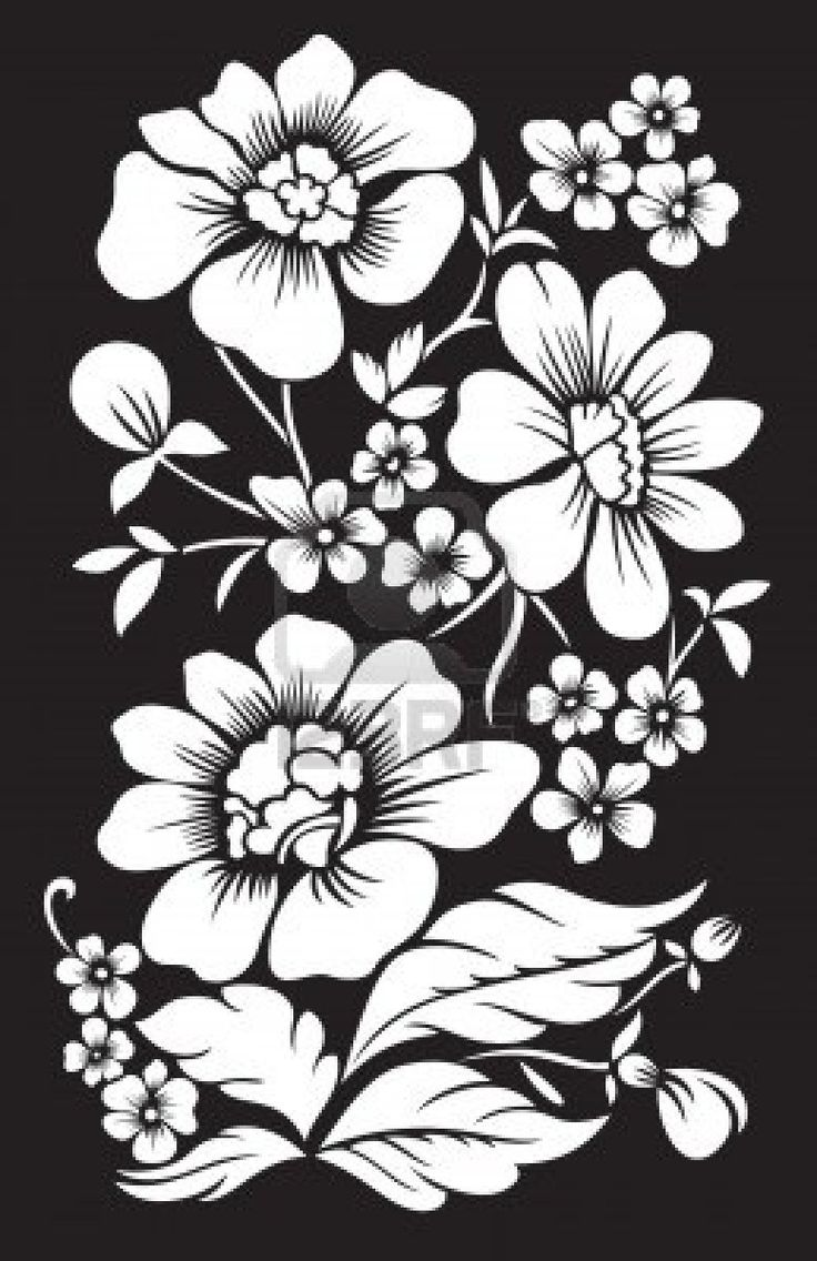129 Best Black And White Flowers Background Images On