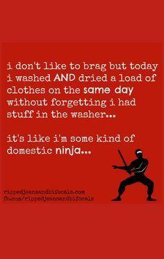 I'm a domestic ninja – The Tuesday Meme