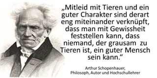 Tierschutz  Zitat Schopenhauer