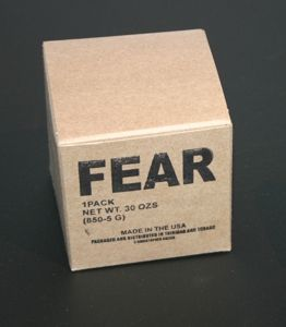 Putting Fear in a Box...is what T1D people do, we all scared we try to put that fear away in box, but it always gets opened up again when we have scare like lows, extreme highs, illness. It's hard to keep fear in a box all the time! Tonight my fear jumped out the box again!♥