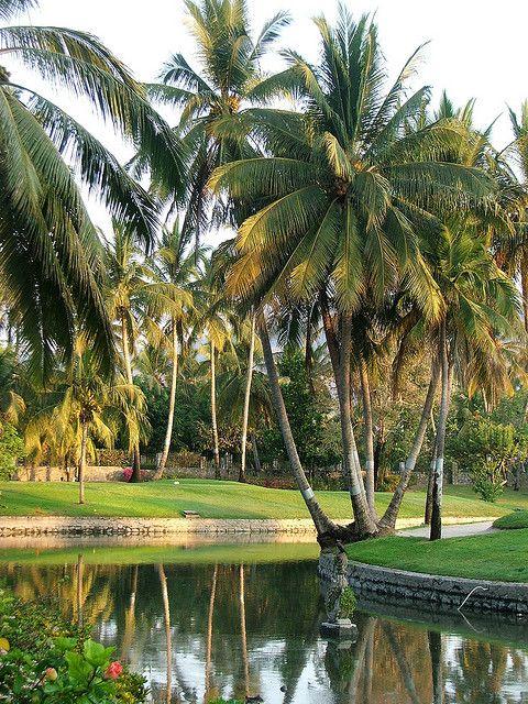 Princess Golf Course, Acapulco