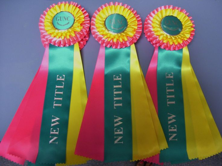 Awesome bright colors on these rosettes!  Regal Rosettes of Florida
