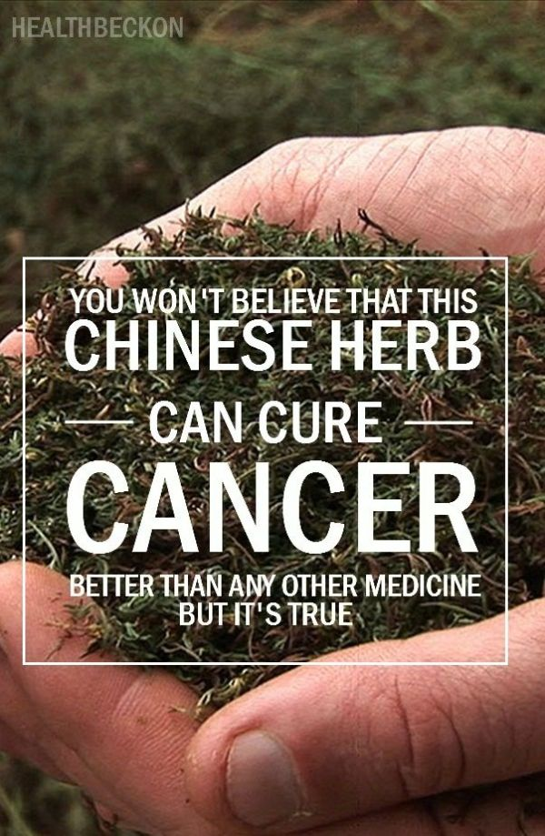 plant medicines in cancer treatment A little-known plant with a truly bizarre name is now making headlines as a cancer killer, with the compound of the plant vanishing tumors in mice with pancreatic cancer.