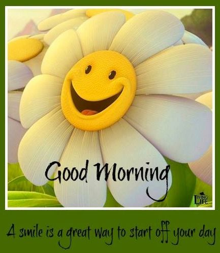 Good morning! via Living Life at www.Facebook.com/KimmberlyFox.39