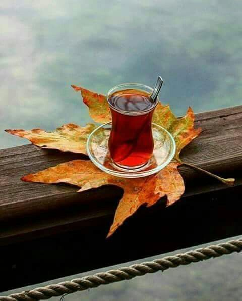 Çayımız Bir Gönül  Ve iki avuç Dua'dan başka neyimiz var ki; Sevgili Dost, Dua'mızı ve çayımızı eksik etmeyelim ..   :