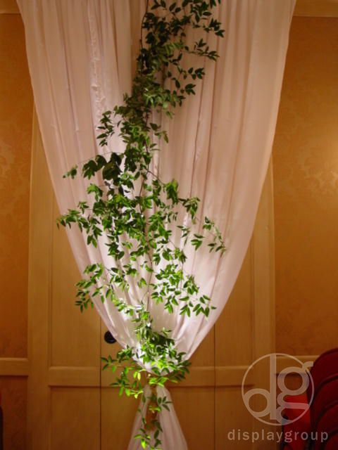 Climbing greenery makes for a whimsical aesthetic #displaygroup