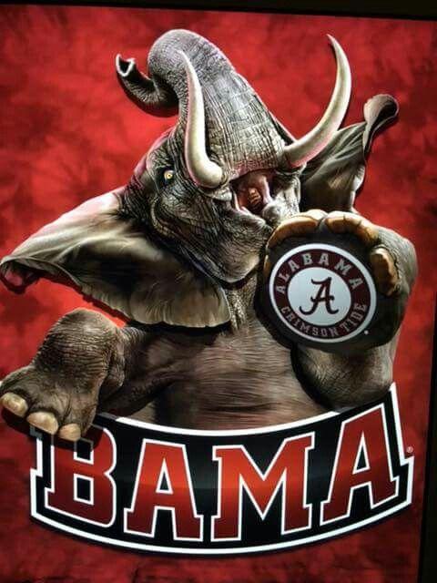 Best 25 Alabama Crimson Tide Ideas On Pinterest Roll