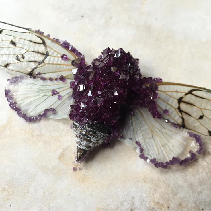 Through crazy chemistry this artist is turning dead bugs into gorgeous crystal sculptures.