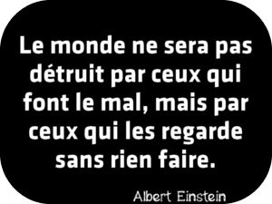 """""""Le monde ne sera pas détruit par ceux qui font le mal, mais par ceux qui les regarde sans rien faire"""" Albert Einstein."""