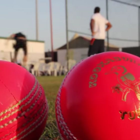 Kookaburra Pink Turf Ball   Official Kookaburra Cricket Balls   Aus