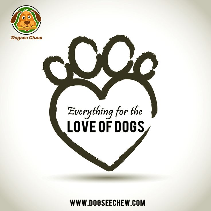Owning a dog just makes you awesome. Order #Dogseechew now to start a #healthy lifestyle for your best friend.