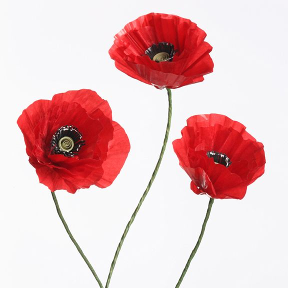 Tutorial: Paper Poppy | MAKE: Craft
