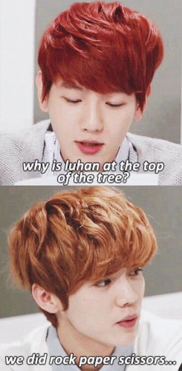 Luhan's so cute☺️ but can we talk about how Rock Paper Scissors is how they make their decisions?