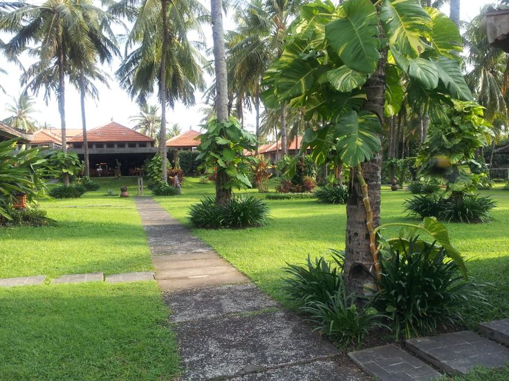 this is hotel ketapang Indah banyuwangi, east java, indonesia. there are hotel and cottage with view bali strait. so beaituful, u can breakfast with see bali island. green grass dominated this area.