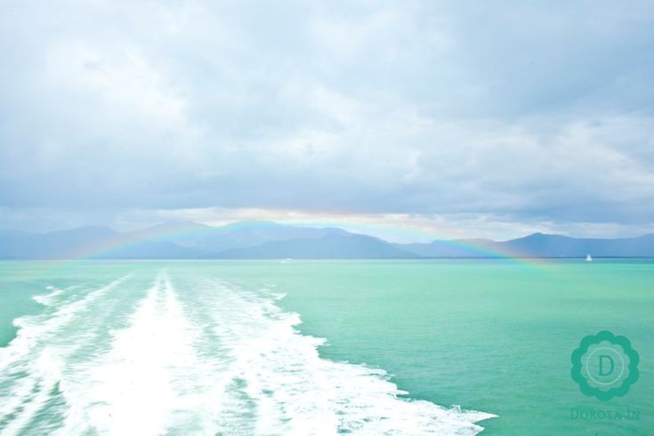 Cairns i Green Island - nurkowanie na Wielkiej Rafie Koralowej  #travel #podróże #australia #greatbarrierreef