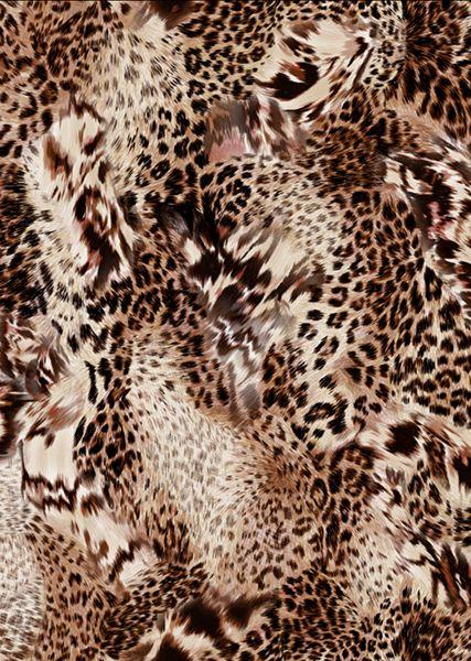 wild animal print wallpaper - photo #41