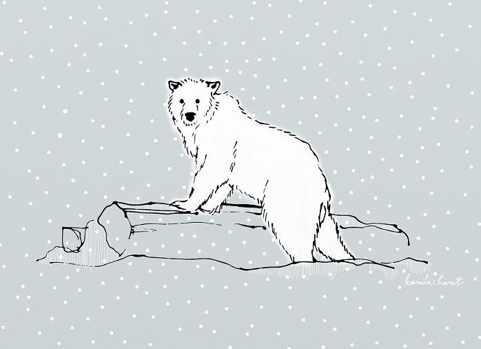 """Check out my @Behance project: """"Polar Bear"""" https://www.behance.net/gallery/49968087/Polar-Bear"""