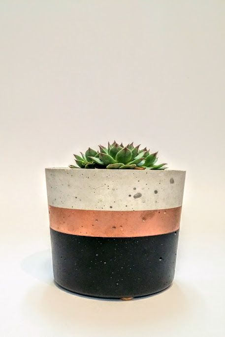 Effie Pots & Co. Modest Tall concrete planter in black + copper available at Harold + Ferne: The Local Goods Co.