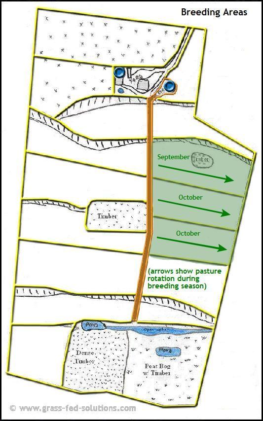 Example Farm Plan: breeding season