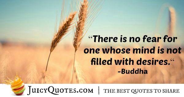 Buddha Quote - 45