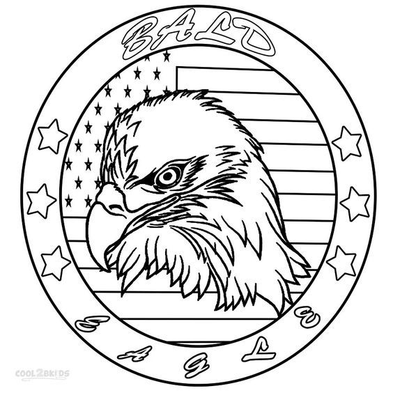 Stunning Eagle Coloring Book 88 Bald eagles are a