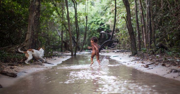 O rio Tapajós faz parte do cotidiano das aldeias: é ali que os homens pescam o alimento das famílias e que as mulheres vão para cozinhar, lavar roupas e banhar as crianças, que crescem brincando nas águas cristalinas dos igarapés. O rio abriga lugares considerados sagrados pelos Munduruku.  Fotografia:  Carol Quintanilha / Greenpeace.  http://noticias.uol.com.br/meio-ambiente/album/2016/03/21/indios-munduruku-protestam-contra-hidreletricas-no-tapajos.htm#fotoNav=17