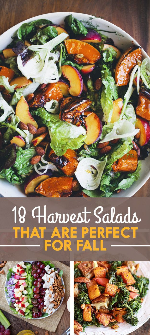 18 Harvest Salads That Are Perfect For Fall @buzz