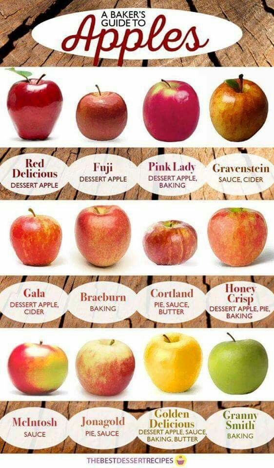 Ref chart for my annual homemade apple sauce --gravenstein, cortland, mcintosh, jonagold, golden delicious!