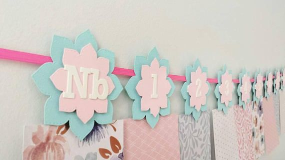 Check out this item in my Etsy shop https://www.etsy.com/ca/listing/547258519/12-month-photo-banner-pink-aqua-flowers