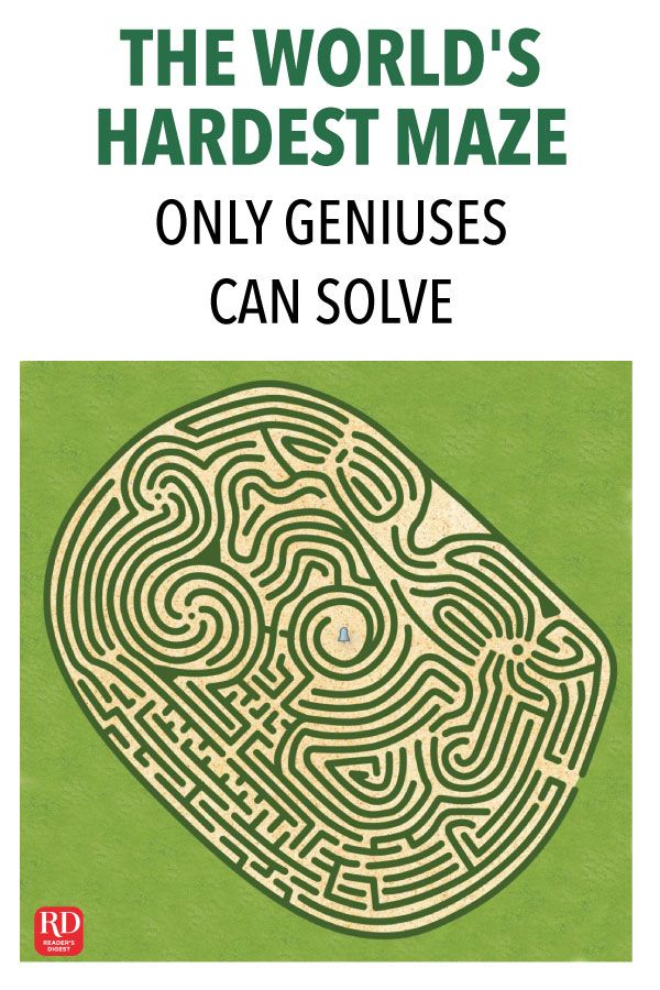 The World's Hardest Maze Only Geniuses Can Solve Hard