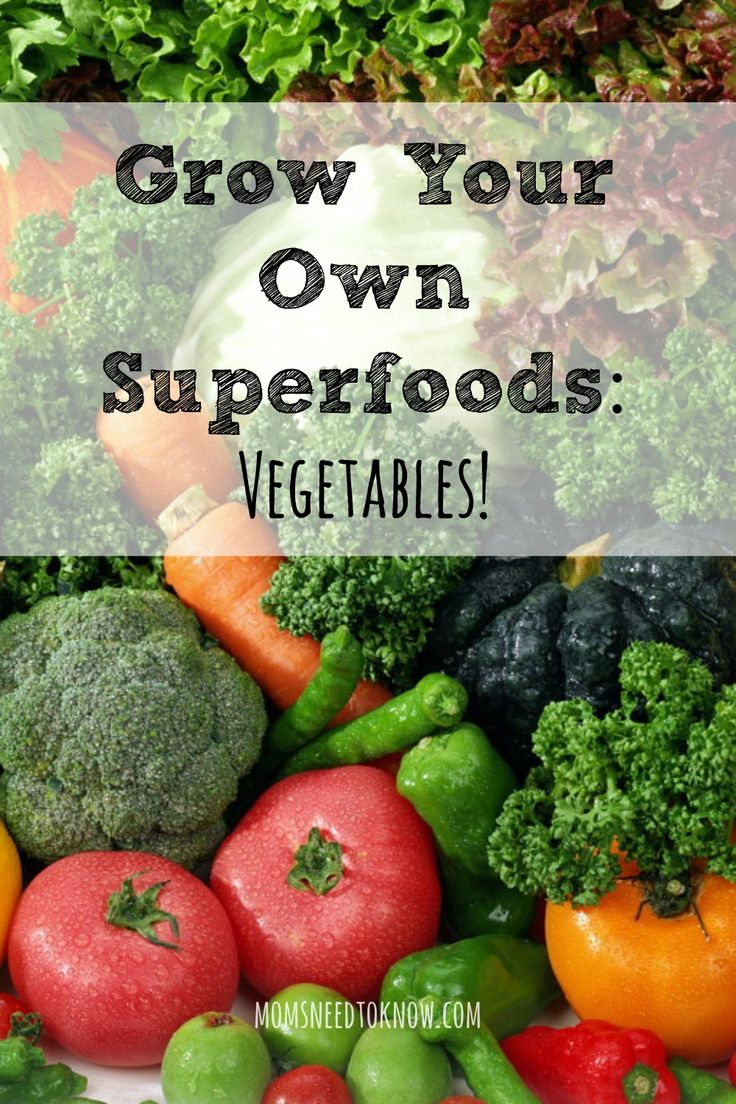 120 best images about gardening on pinterest gardens for Grow your own vegetable garden