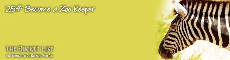 25# Become a Zoo Keeper    http://www.100beforeyoudie.com/become-a-zoo-keeper/become-a-zoo-keeper    #bucketlist #100beforeyoudie