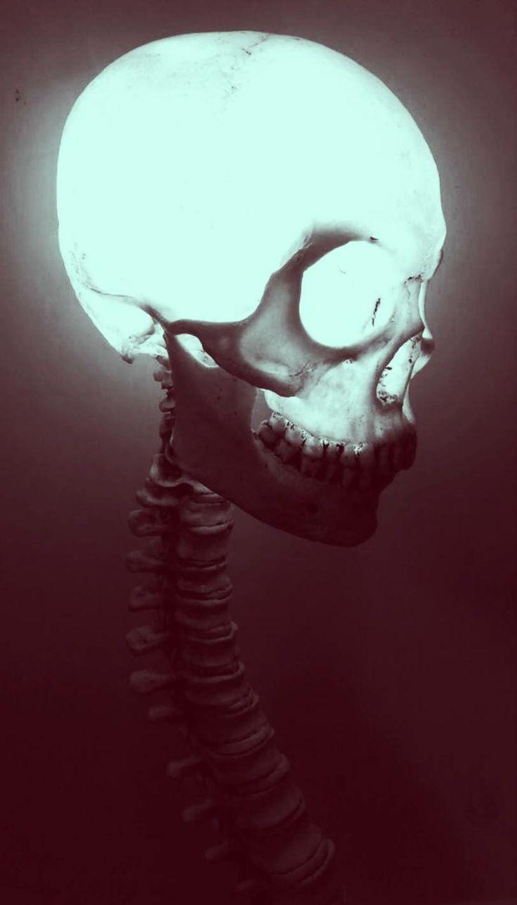 Light skull