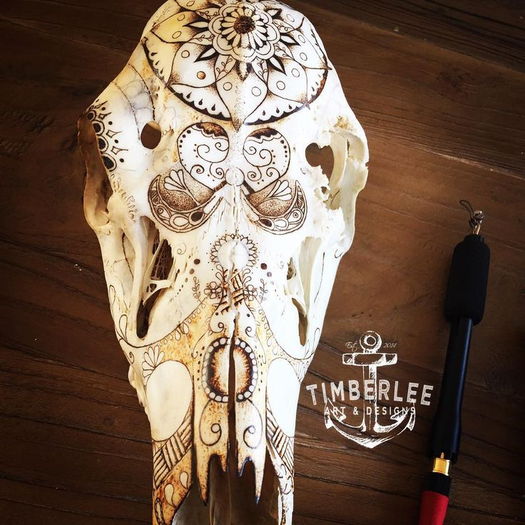 Deer Skull Pyrography,Work in progress!  Mandala and Zentangle inspired pattern using a Razertip burner. Pyrography art by #TimberleeEU #timberleepyrography