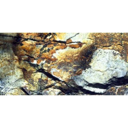 Rock Wasatch National Forest UT USA Canvas Art - Panoramic Images (24 x 12)