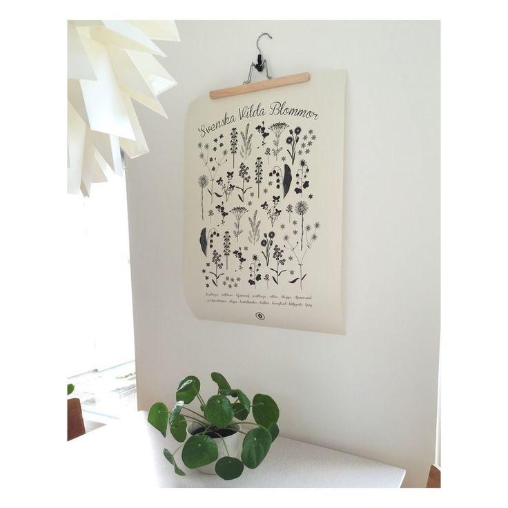 Produkten Hjeltmans grafiska, Svenska Vilda blommor, svart. Poster 50x70 säljs av Prints i vår Tictail-butik.  Tictail låter dig skapa en snygg nätbutik helt gratis - tictail.com