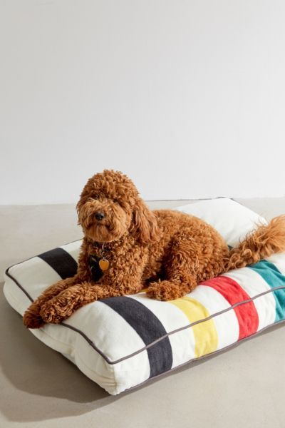 The perfect place for pets to rest, this cushion features Pendleton's signature National Park stripes. Plush build is made from a soft, cozy polyester fleece with contrast piping and cotton canvas base. Remove cover to wash. Urban Outfitters, Hamster, Pet Beds, Cute Dog Beds, Doggie Beds, Puppy Beds, New Puppy, Dog Accessories, Fur Babies