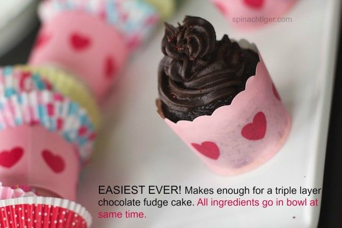 Chocolate Fudge Cupcakes from Spinach Tiger