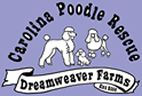Animal Rescue in Upstate South Carolina (not just poodles)