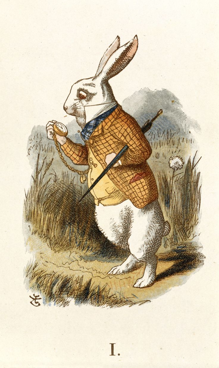 The White Rabbit from Alice's Adventures in Wonderland