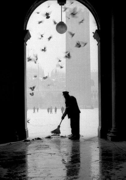 Gustavo Millozzi :: Colombi e neve / Doves and Snow, Venice, 1960