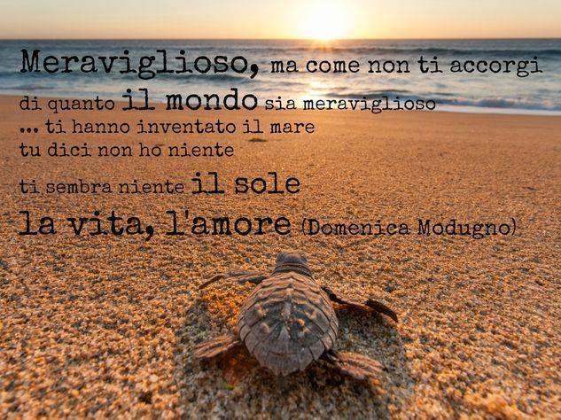 Meraviglioso - Domenico Modugno -